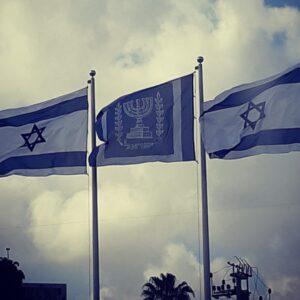 """דגלי לוגו להנפה במידה 220*160 ס""""מ"""