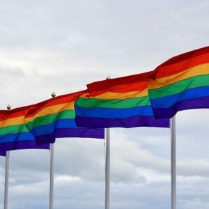 """דגל גאווה 150*100 ס""""מ"""